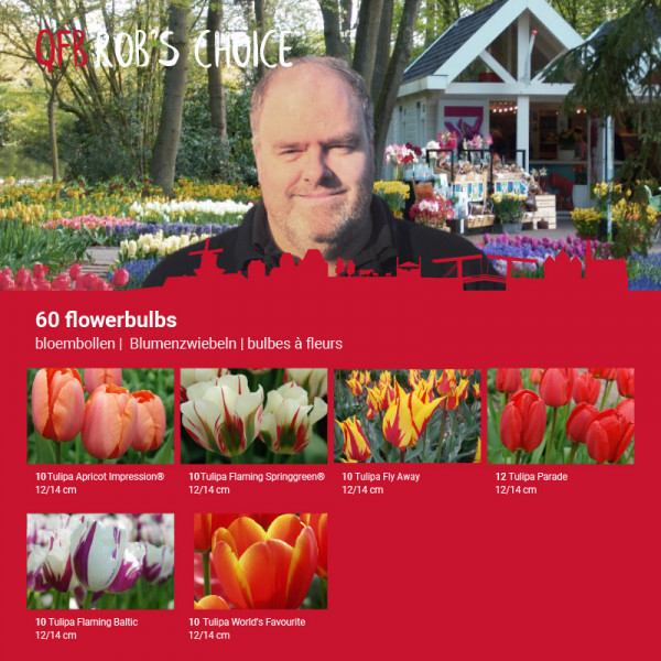 ROB's Flower Bulb Collection